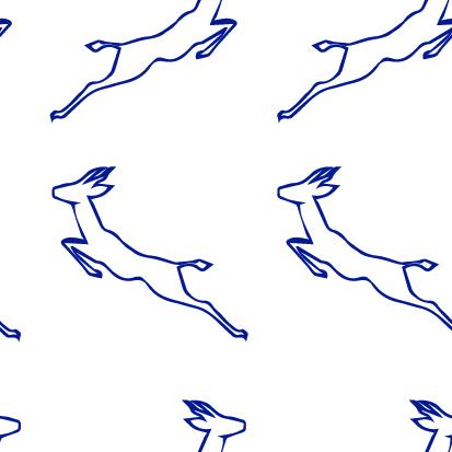 Springbok outline_Artboard 4 (2)