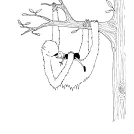 Dreams in Trees – Limited Edition Illustration